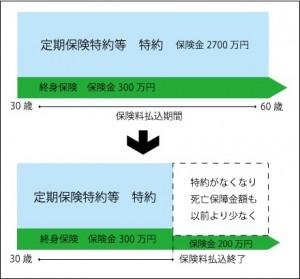 hoken-haraizumi-2